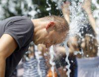 2017 год стал самым жарким за всю историю метеонаблюдений