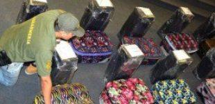 В посольстве России в Аргентине обнаружили 400 кг кокаина, задержаны пять человек