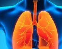 Ученые назвали лучшие продукты для оздоровления легких