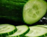 Назван овощ, который способен укрепить кости и улучшить зрение
