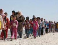 Тысячи утерянных и найденных заново жизней: В мире отмечают Всемирный день беженцев