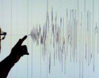 В Иране в результате землетрясения пострадали 128 человек