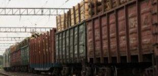 Порошенко наложил вето на криминализацию контрабанды леса