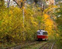 В Украине начинает холодать, но туманы останутся