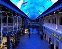 Компания Samsung создала уникальное светодиодное небо на борту корабля